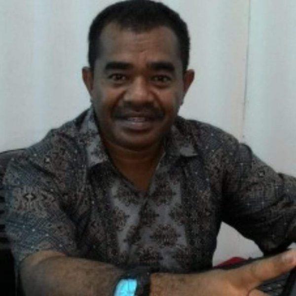 Gregorius Nafanu, Penulis